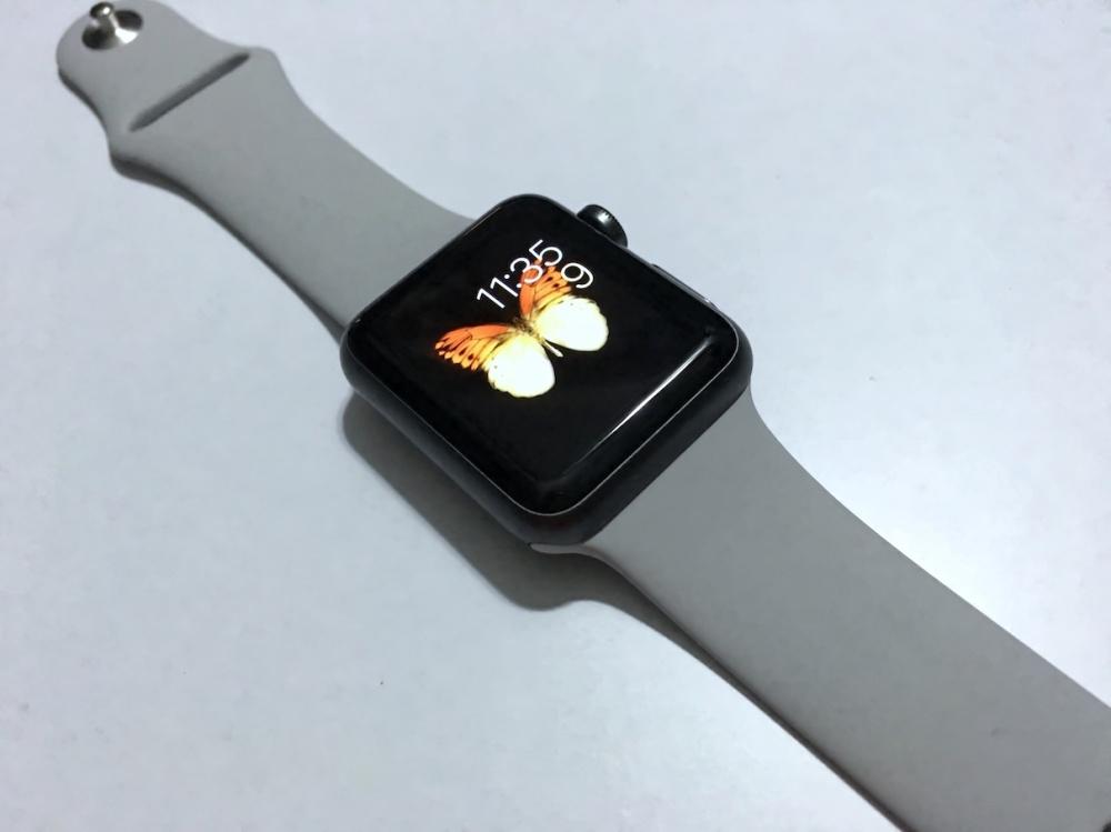 Apple Watch Sport Band Fog 6