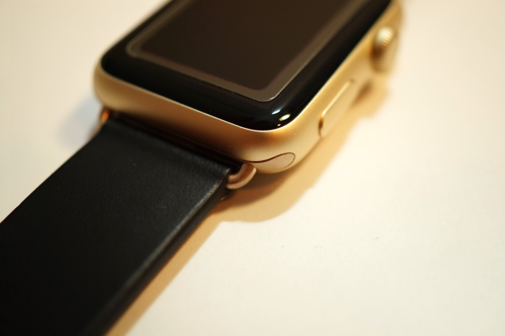 Monowear Black Leather + Gold Buckle 01