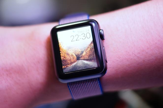 Apple Nylon Watch Band Royal Blue 30