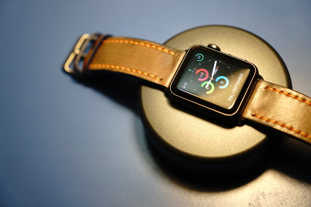 strapley apple watch band 24