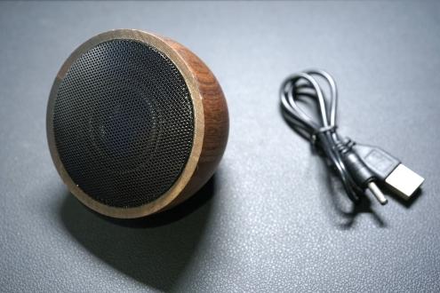 Acoustic Acorn 13