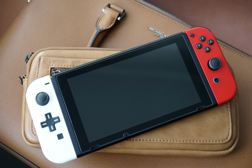 Nintendo Switch Leather Case 01