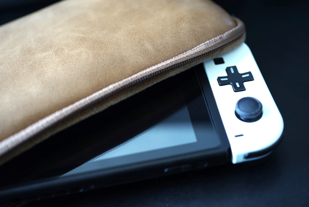 Nintendo Switch Leather Case 05